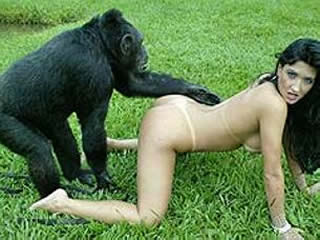 Horny girls with monkey